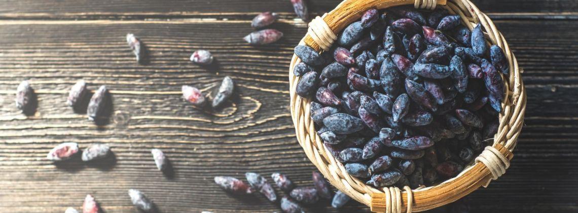 Właściwości jagody kamczackiej