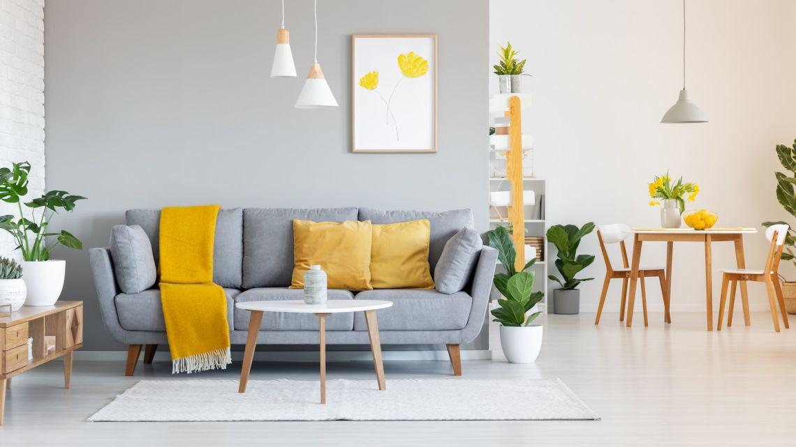 Jak malować ściany i dobierać kolory?
