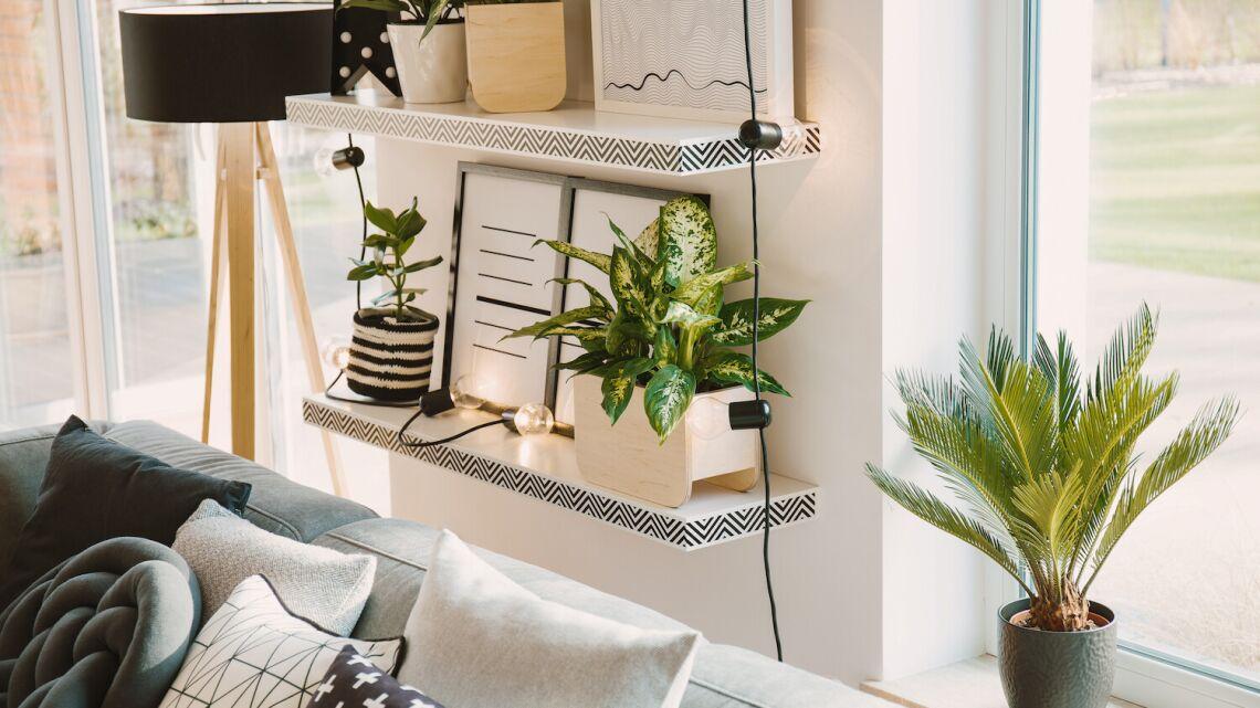 Oryginalna półka ścienna – pomysł na dekorację wnętrza
