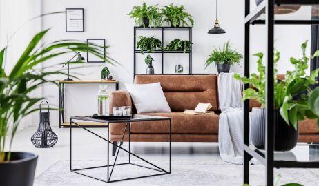Mieszkanie w stylu urban jungle