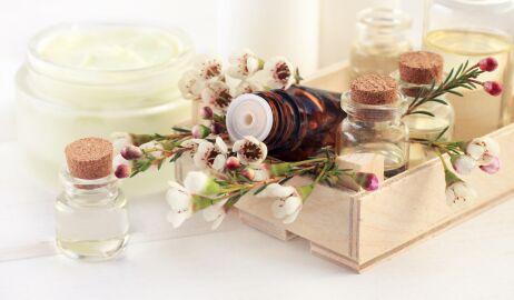Naturalne odświeżacze powietrza i pochłaniacze zapachów