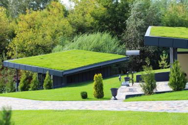 Ogród na dachu – jak go założyć i pielęgnować?