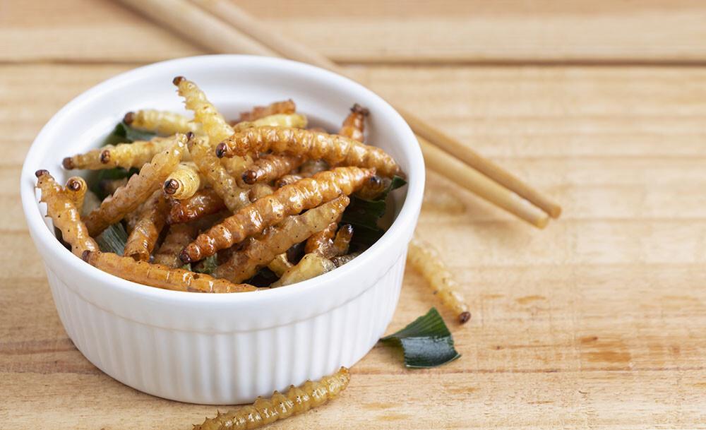 robaki do jedzenia