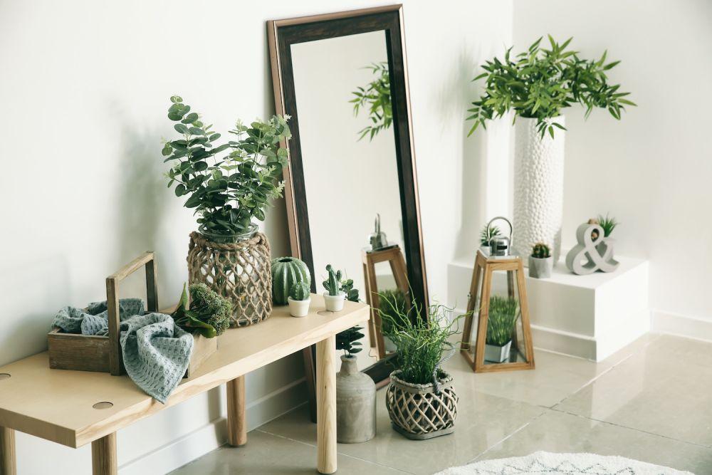 lustro, zielone rośliny w doniczkach