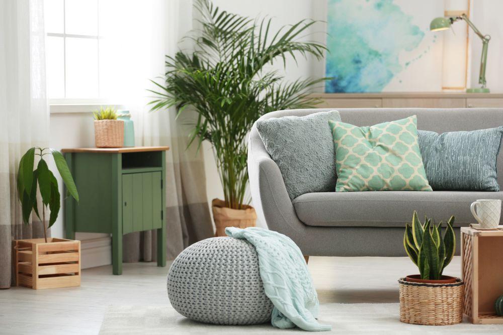kwiaty w salonie, sofa, poduszki
