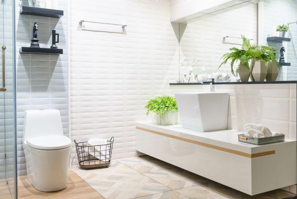 paprotki i rośliny w łazience