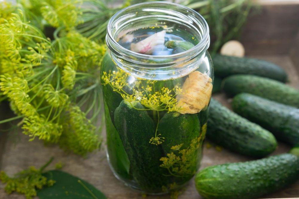 Pikantne ogórki małosolne w zalewie miodowej - zdjęcie 2