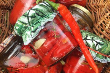 Papryka w ziołach