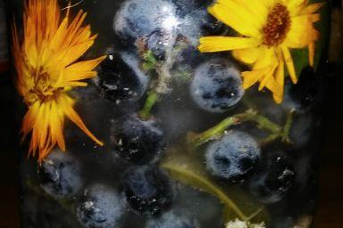 Kiszonka owocowo-kwiatowa