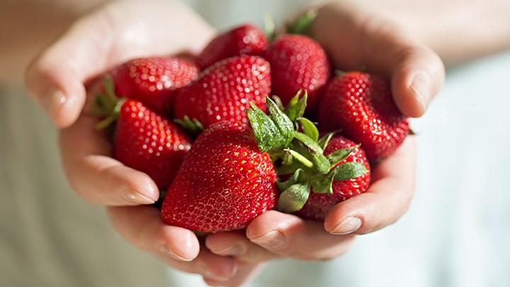 Owoc truskawki jest dziełem człowieka, nie natury.