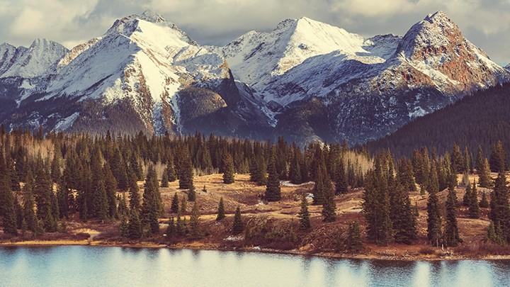 """Co kryje się pod amerykańską nazwą """"Ostrygi z Rocky Mountain""""?"""