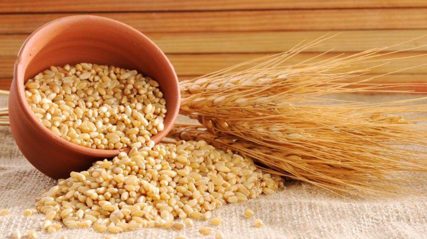 Naturalna pszenica z marchwią i orzechami laskowymi