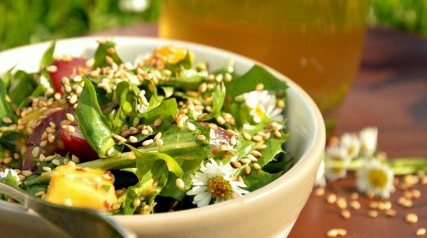 Sałatka z liści mlecza, słodkimi owocami i kwiatami stokrotki