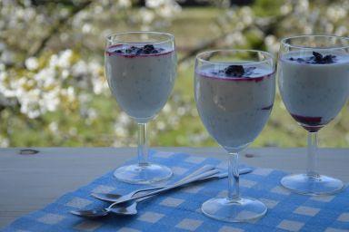 Lekki deser jogurtowy z owocami leśnymi