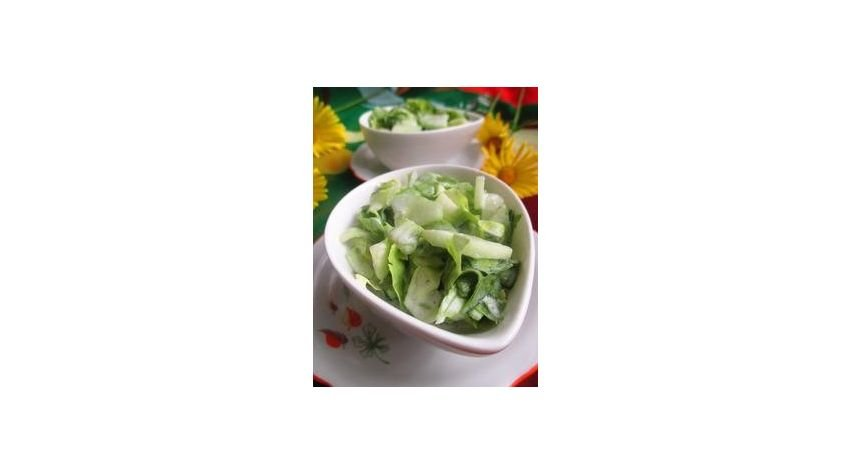 Sałatka ogórka i sałaty