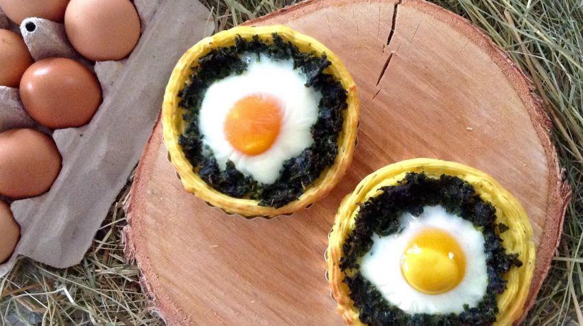 Jajko w gnieździe