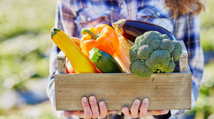 Rozgrzewająca żywność idealna na jesień