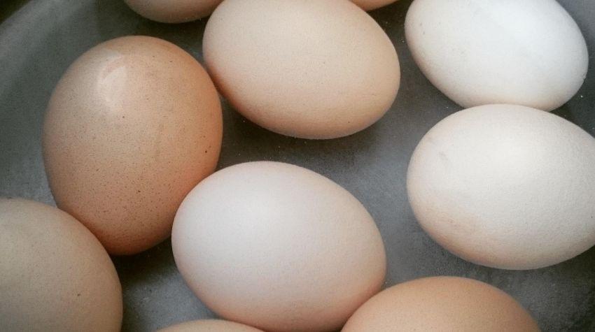 Aby jajka nie pękały podczas gotowania