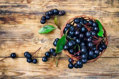 Jak zrobić sok z aronii, tak aby nie był cierpki?