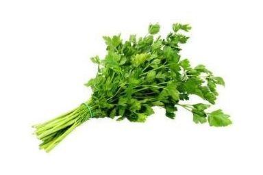 Świeże zioła zawsze pod ręką